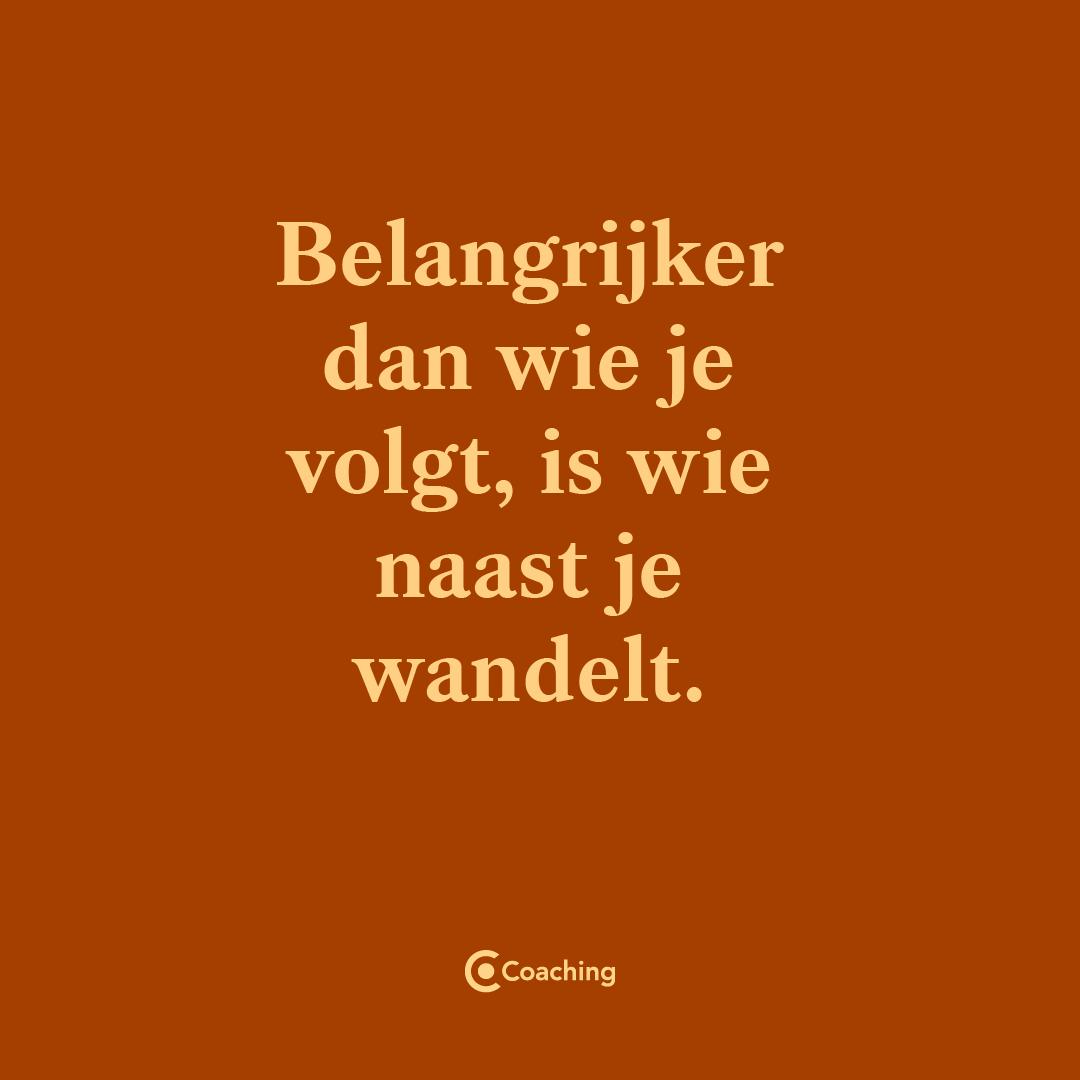 Co-coaching-arnhem-quote-wandelen